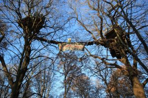 Resistencia en el Bosque okupado de Hambach