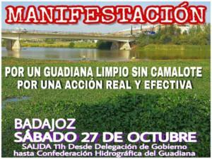Manifestación: Acción Real y Efectiva en el Guadiana @ Avenida de Huelva (Frente a la delegación))