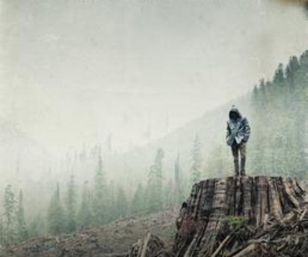 [ Docu ] If a tree falls <br> <h5>A Story of the Earth Liberation Front</h5>