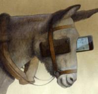 La sociedad smartphone