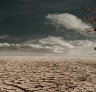 [Texto] Devastación de la Tierra: Monocultivo, agrotóxicos, megaminería, fracking, energía nuclear…